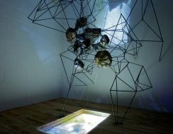 Installation view of Mark Baugh-Sasaki