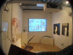 Installation view of Launch, group exhibition at ASC Projects, 2013