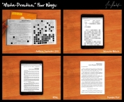 Tim Roseborough: Meta-Practice, 2013, essay, Artforum 'ad', and website